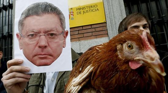 """Manifestation devant le ministère de la Justice. Les """"pro-vie"""" traitent Gallardón de poule mouillée (gallina)."""